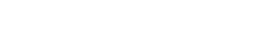 layn-logo